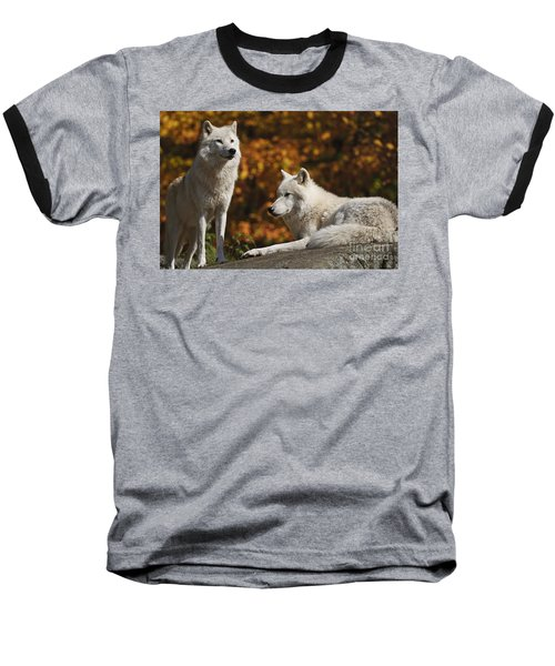 Baseball T-Shirt featuring the photograph Two Arctic Wolves On Rock Hill by Wolves Only