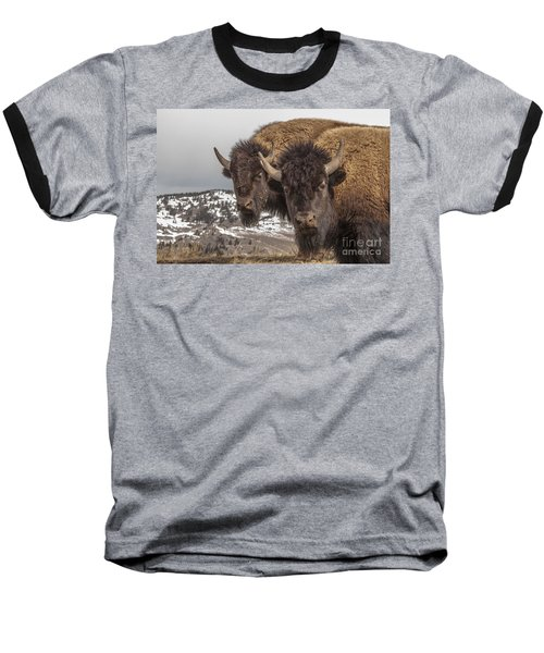 Two Bison Baseball T-Shirt