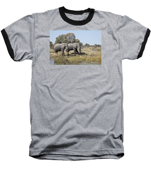 Two Bull African Elephants - Okavango Delta Baseball T-Shirt