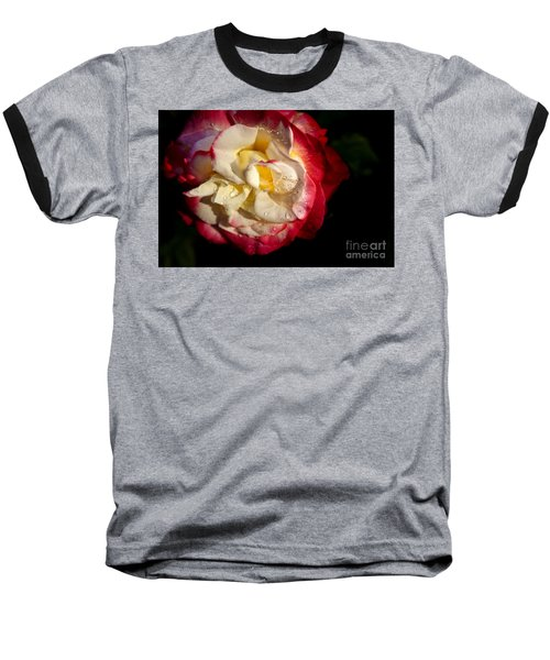 Baseball T-Shirt featuring the photograph Two Color Rose by David Millenheft