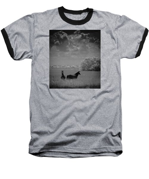Two Horses Baseball T-Shirt