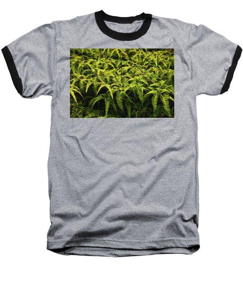 Uluhe Fern II Baseball T-Shirt