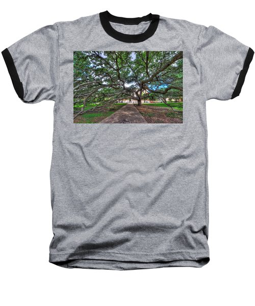 Under The Century Tree Baseball T-Shirt