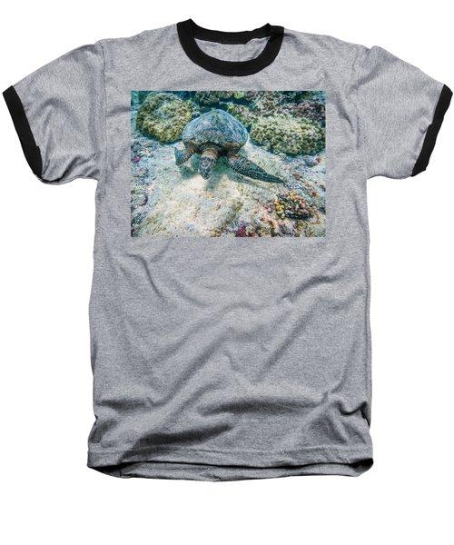Swimming Turtle Baseball T-Shirt