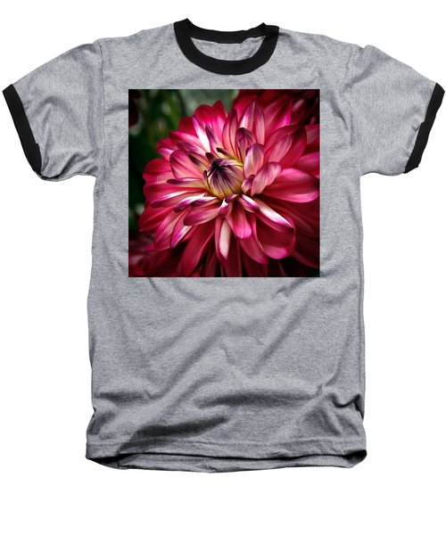 Dahlia Unfolding Baseball T-Shirt