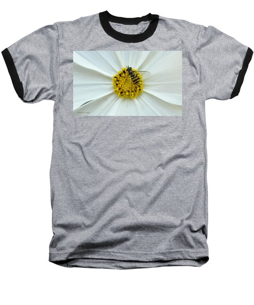 Up Close With The Bee And The Cosmo Baseball T-Shirt