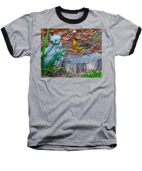Vared Thursh Baseball T-Shirt by Brian Williamson