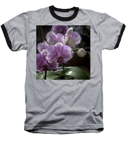 Variegated Fuscia And White Orchid Baseball T-Shirt