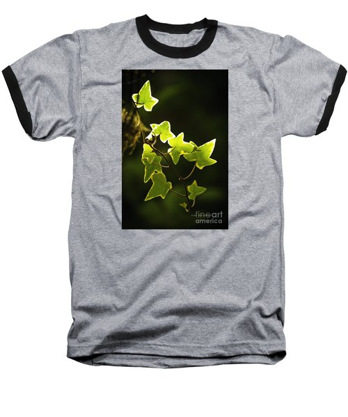Variegated Vine Baseball T-Shirt