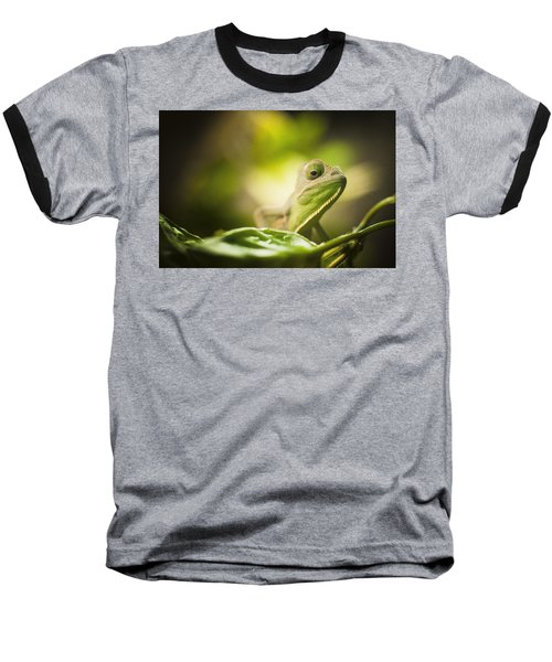 Veiled Chameleon Is Watching You Baseball T-Shirt by Bradley R Youngberg