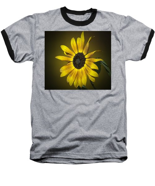 Velvet Queen Sunflower Baseball T-Shirt
