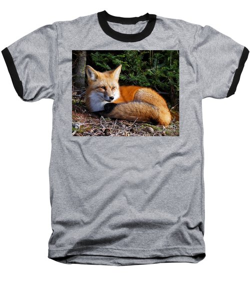 Vested Fox Baseball T-Shirt