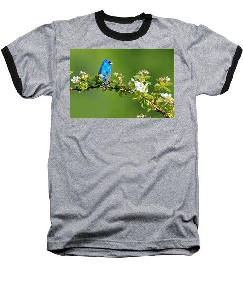 Vibrance Of Spring Baseball T-Shirt