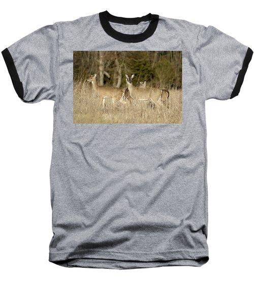 Vigilant White-tailed Deer Baseball T-Shirt