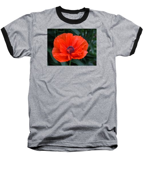 Baseball T-Shirt featuring the photograph Village Poppy by Francine Frank
