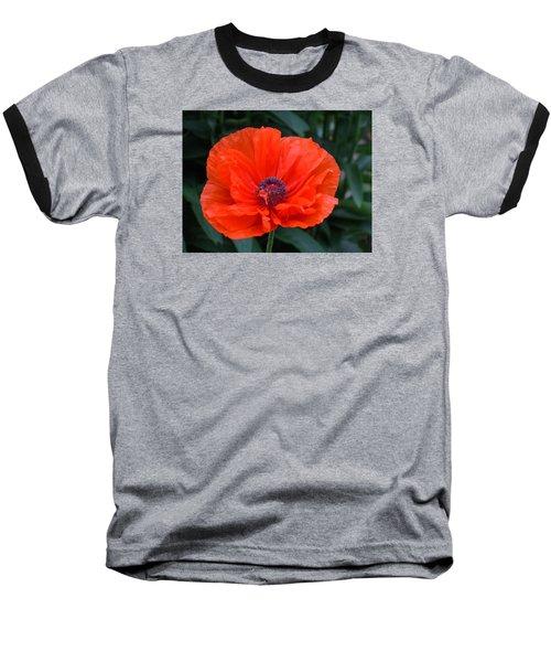Village Poppy Baseball T-Shirt