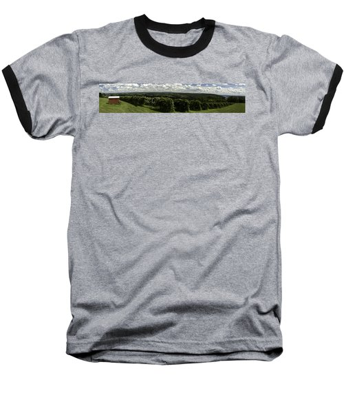 Vineyard On Keuka Lake Baseball T-Shirt by Richard Engelbrecht