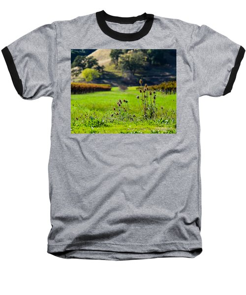 Baseball T-Shirt featuring the photograph Vineyard Thistles by CML Brown