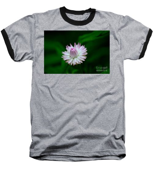 Violet And White Flower Sepals And Bud Baseball T-Shirt