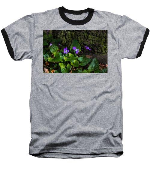Violets Baseball T-Shirt by Dorothy Cunningham