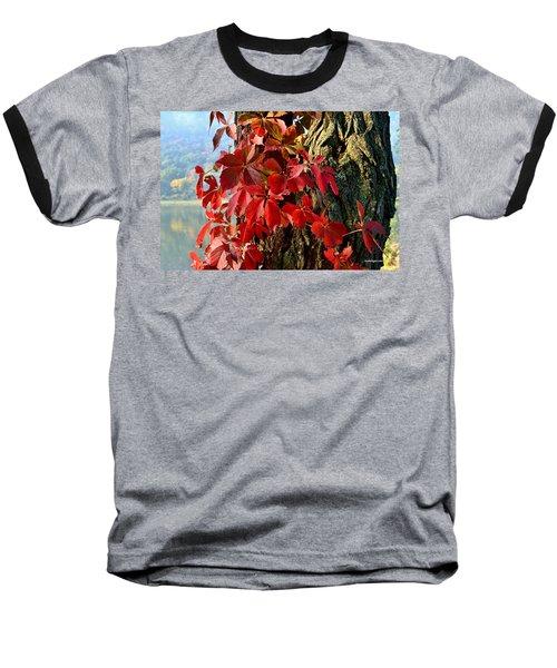 Virginia Creeper Baseball T-Shirt