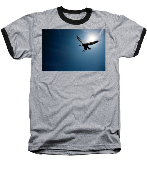 Vulture Flying In Front Of The Sun Baseball T-Shirt by Johan Swanepoel