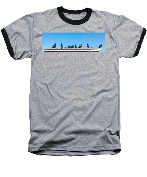 Vultures On Anhinga Trail, Everglades Baseball T-Shirt