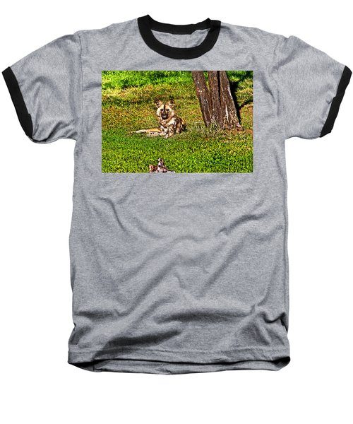 Waching You Baseball T-Shirt