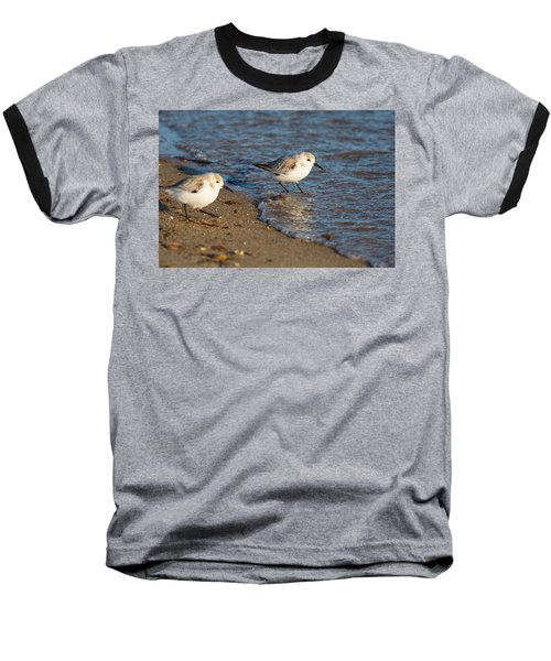 Wading Sanderlings Baseball T-Shirt