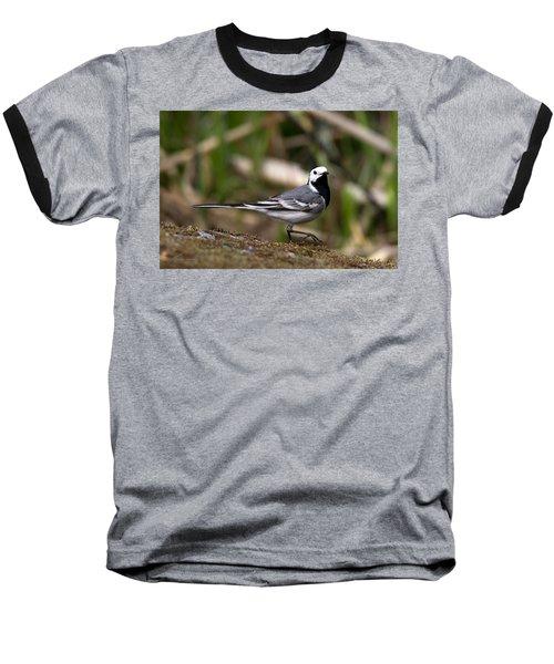 Wagtail's Step Baseball T-Shirt