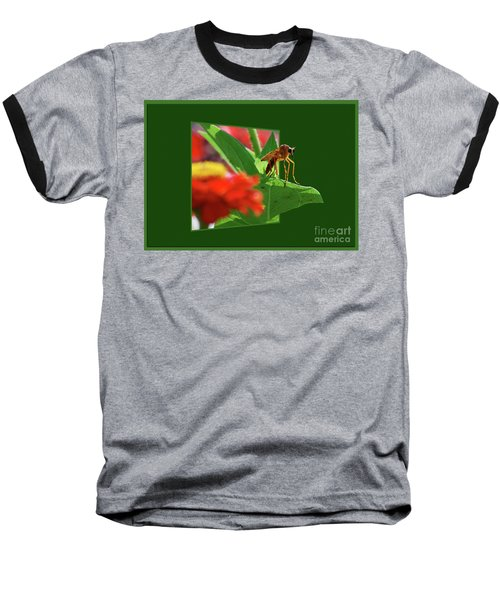 Baseball T-Shirt featuring the photograph Waiting For A Date by Thomas Woolworth
