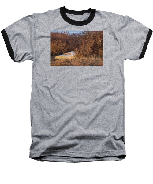 Baseball T-Shirt featuring the photograph Waiting On Spring by Joan Davis