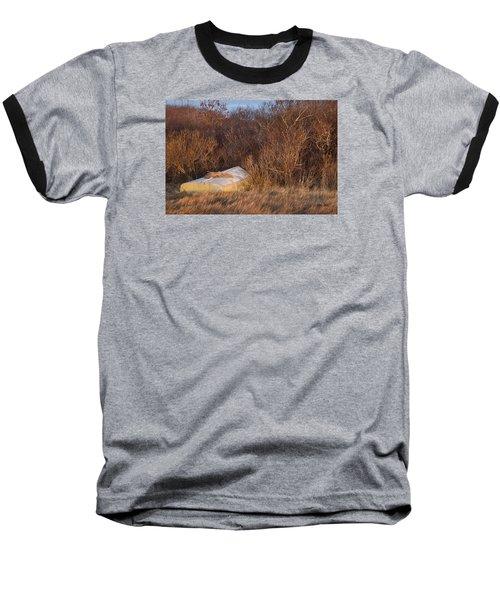 Waiting On Spring Baseball T-Shirt by Joan Davis