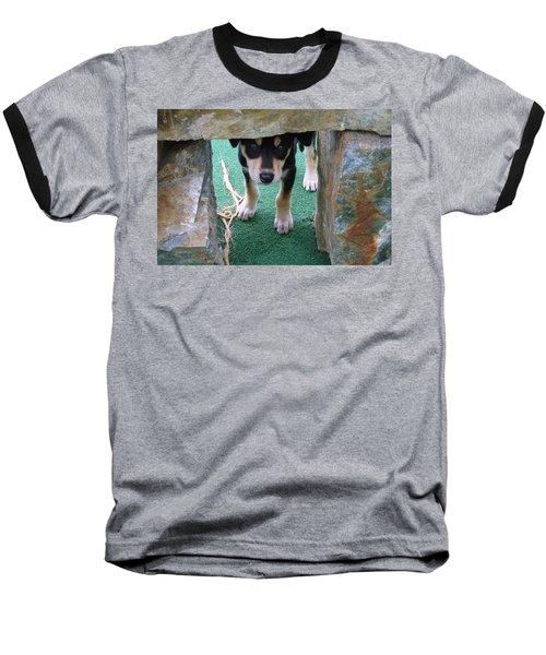 Wannabe Sled Dog In The Yukon Baseball T-Shirt by Richard Rosenshein