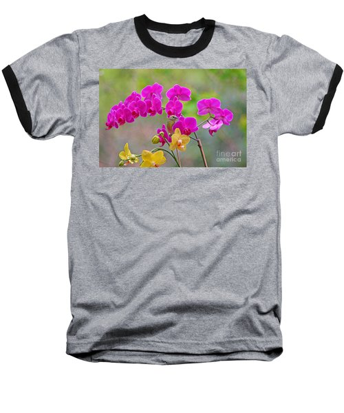 Warbler Posing In Orchids Baseball T-Shirt by Luana K Perez