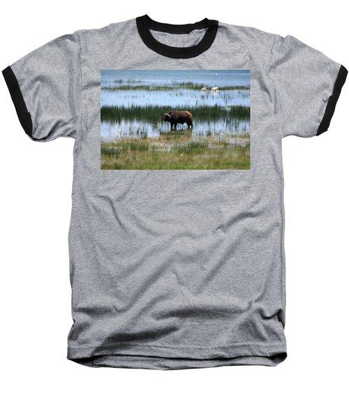 Water Buffalo At Lake Nakuru Baseball T-Shirt