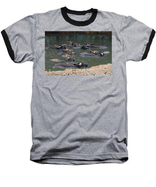 Water Buffalo Baseball T-Shirt by Chris Flees