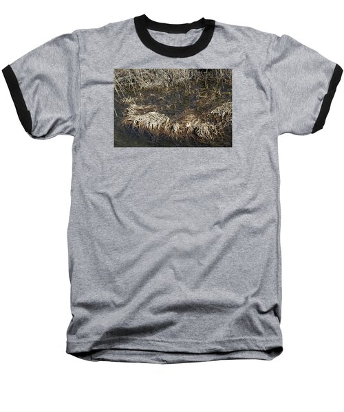 Baseball T-Shirt featuring the photograph Dried Grass In The Water by Teo SITCHET-KANDA