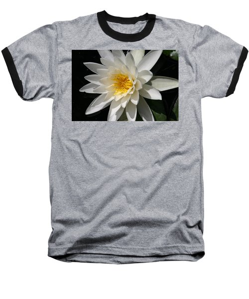 Water Lily  Baseball T-Shirt by Denyse Duhaime