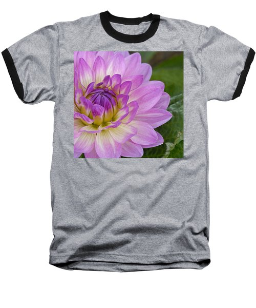 Waterlily Dahlia Baseball T-Shirt