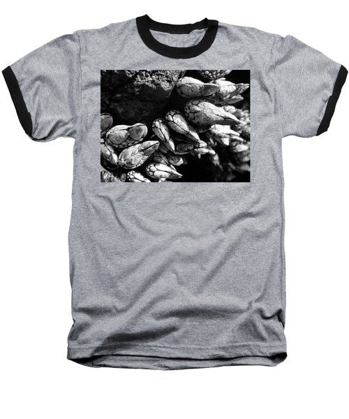 Baseball T-Shirt featuring the photograph West Coast Delicacy by Cheryl Hoyle