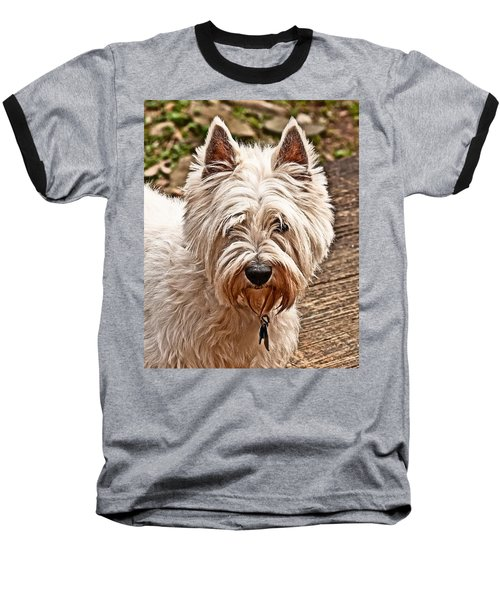 Baseball T-Shirt featuring the photograph West Highland White Terrier by Robert L Jackson