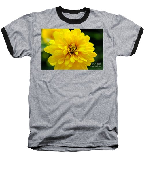 West Virginia Marigold Baseball T-Shirt by Melissa Petrey