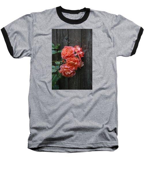 Westerland Rose Wood Fence Baseball T-Shirt