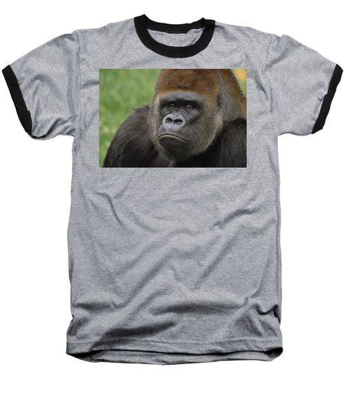 Western Lowland Gorilla Silverback Baseball T-Shirt by Gerry Ellis