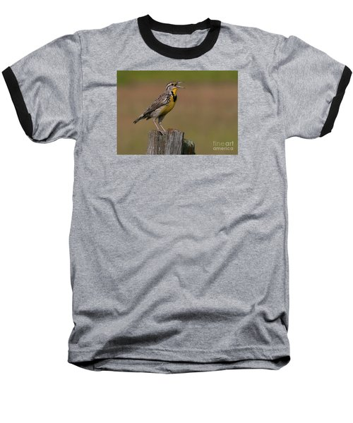 Western Meadowlark.. Baseball T-Shirt