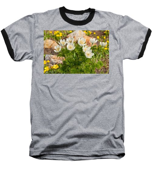 Baseball T-Shirt featuring the photograph Western Pasqueflower And Buttercups Blooming In A Meadow by Jeff Goulden