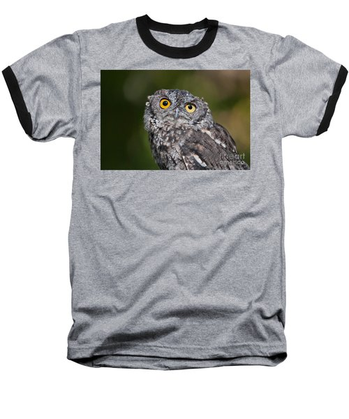 Western Screech Owl No. 3 Baseball T-Shirt