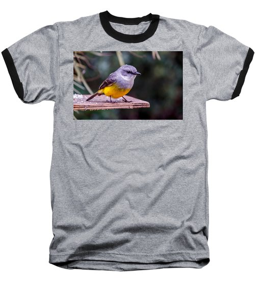 Western Yellow Robin Baseball T-Shirt