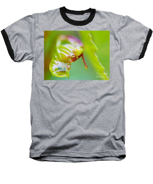 Wet Grape Leaf  Baseball T-Shirt